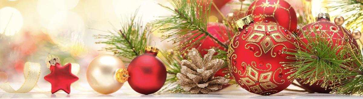 Коледни и парти предложения