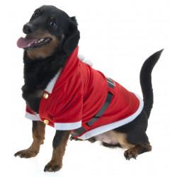 Коледен костюм за куче AAF203600