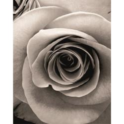 Душ завеса Роза 180 - 200 см