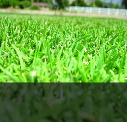 Тревни смески